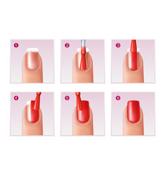 manicure process set vector image