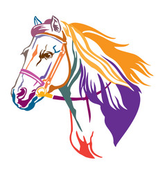 colorful decorative horse 9 vector image