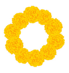 Marigold flower - tagetes wreath vector