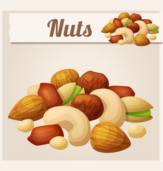 nuts cartoon icon vector image