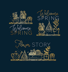 shelf with flowers welcome spring gold vector image