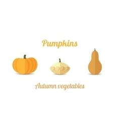 three pumpkins vector image