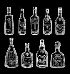 hand drawn of different bottles vector image vector image