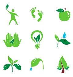 nature set of symbols vector image