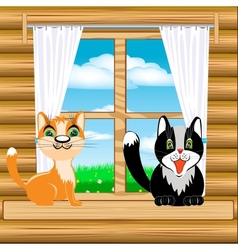 Cats on window vector image vector image