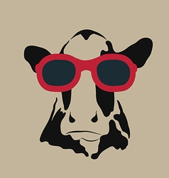 Cow glasses vector image vector image