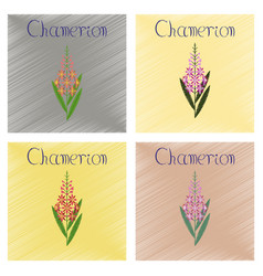 Assembly flat shading style icon herbal chamerion vector