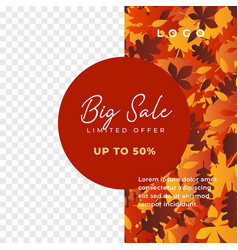 autumn big sale social media promotion poster vector image