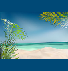 beach with palms and sea vector image