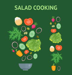cartoon dish and ingredients set cooking salad vector image