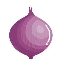 fresh onion vegetable icon vector image