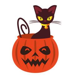 Halloween pumpkin with cat animal vector