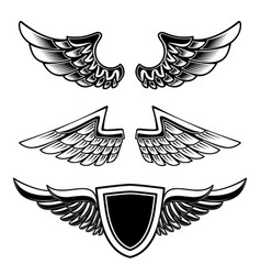set vintage emblems with wings isolated on vector image