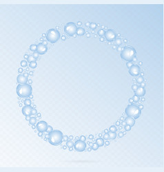 soap bubbles circle vector image