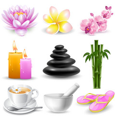 SPA objects set vector image