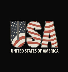 letters usa with the image of american flag vector image