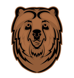 bear head mascot for a sports team logo vector image