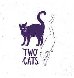 cats black and white vector image