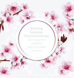cherry blossom round card frame spring delicate vector image vector image