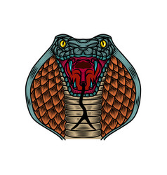 cobra snake in old school tattoo style design vector image