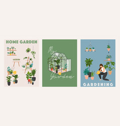 garden flowers and plants at home and outdoor vector image