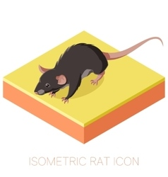 Isometric rat icon on a square ground vector