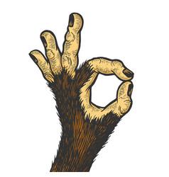 Monkey hand ok gesture color sketch engraving vector
