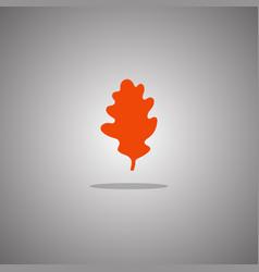 oak leaf orange isolated vector image
