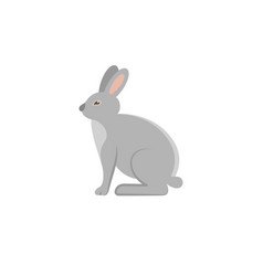 rabbit flat icon vector image