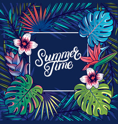 summer time hand written lettering text vector image