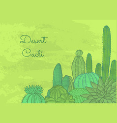 wild cacti plants with place for text vector image