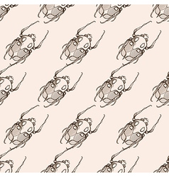 Hand drawn engraving sketch scarab beetle may vector