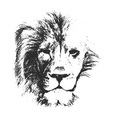 Lion Face Outline Vector Images Over 570 We believe in helping you find the product that is right for you. lion face outline vector images over 570