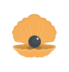Opened shell icon flat style vector