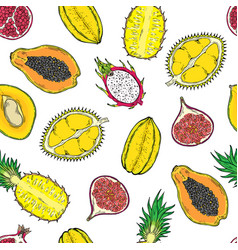 Pattern of exotic fruits on a wight background vector