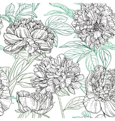 Seamless pattern of peonies graphics vector image