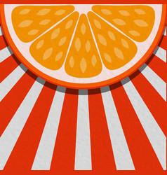 summer background with orange fruit vector image