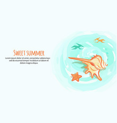sweet summer banner with cream colored sea shell vector image