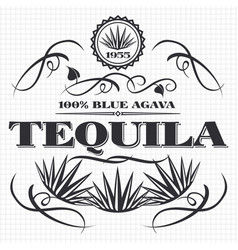 alcohol drink tequila banner design vector image vector image