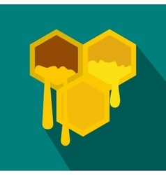 Honeycomb icon in flat style vector image vector image