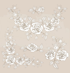 romantic vintage bouquet with roses and leaves vector image