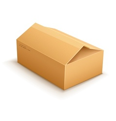 opening cardboard delivery vector image vector image