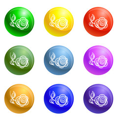 abstract rose icons set vector image