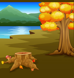 autumn landscape with rivers and mountain vector image