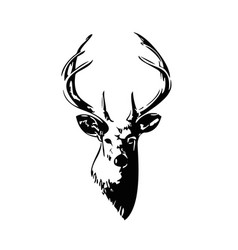 black deer vector image
