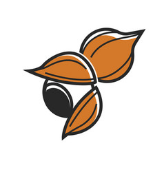 Cracked and whole nut vector
