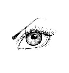female eye with hand- drawing style vector image
