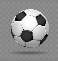 Soccer ball isolated on transparent background vector