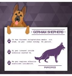 german shepherd dog banner vector image