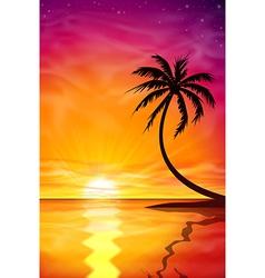 Sunset Sunrise with Palm Tree vector image